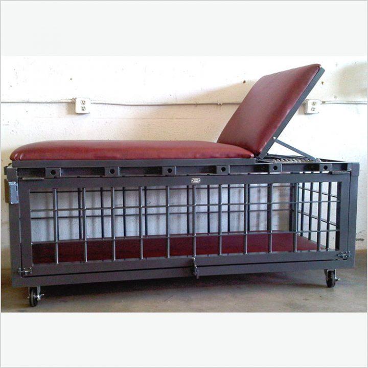 Bondage Table Cage
